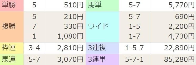 11月21日阪神8R結果
